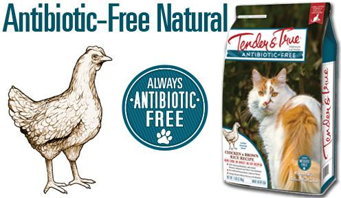 Antibiotic-Free Chicken and Brown Rice Dry Cat Food