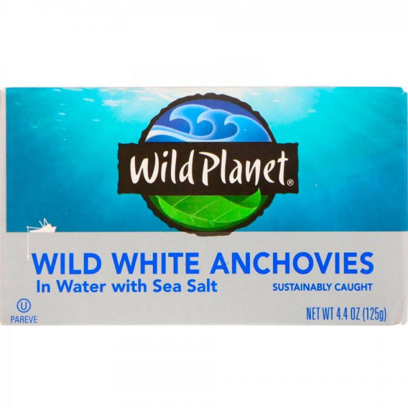 Wild White Anchovies In Water