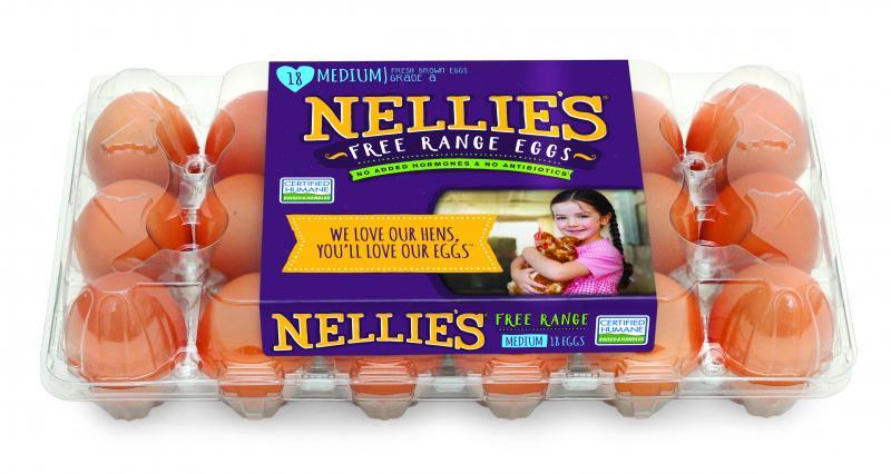 Medium Fresh Brown Eggs