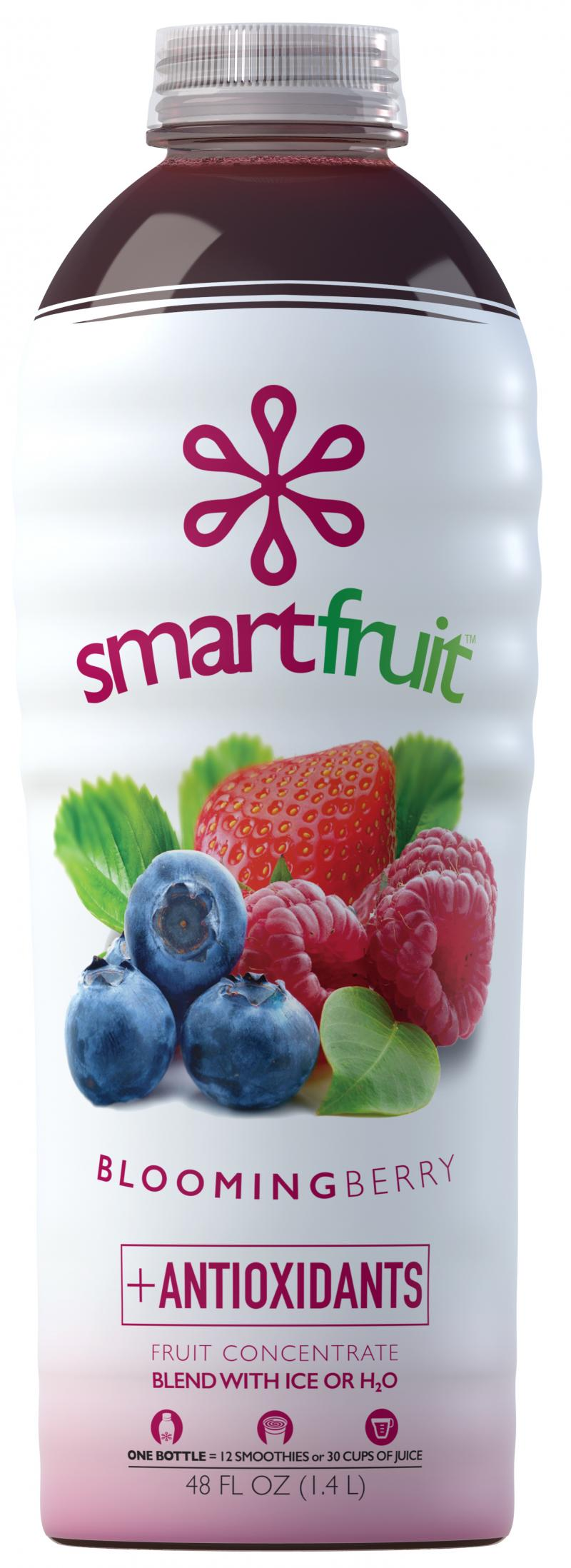 Blooming Berry + Antioxidants Fruit Concentrate