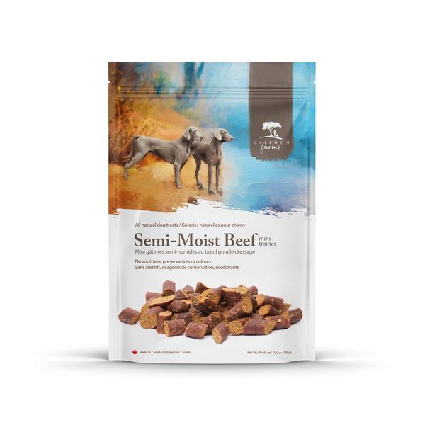 SEMI-MOIST BEEF MINI TRAINER ALL NATURAL DOG TREATS