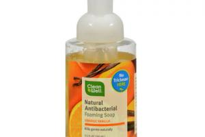 Foaming Hand Soap With Botanical Oils, Orange Vanilla