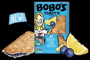 Blueberry Lemon Poppyseed Toast'r Pastry