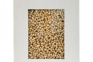 Organic Maftoul (couscous)