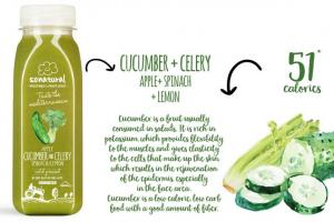 CUCUMBER + CELERY Fruit Juice