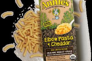 Organic Elbow Pasta & Cheddar