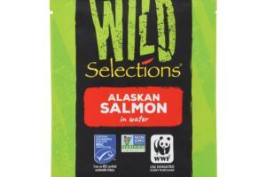 Alaskan Salmon in Water