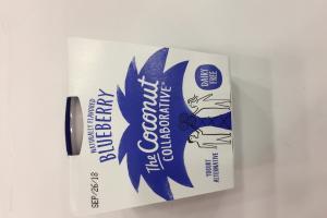 Yogurt Alternative