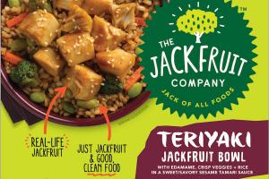 Jackfruit Bowl