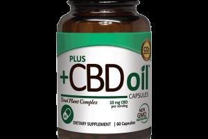 CBD Oil Capsules - 60