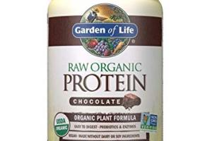 Raw Organic Protein Powder - Chocolate