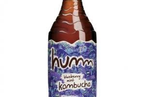 Blueberry Mint - Kombucha
