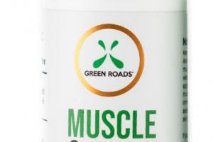 300MG CBD MUSCLE & JOINT RELIEF CREAM
