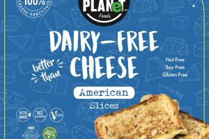 Dairy-free Cheese American Slices