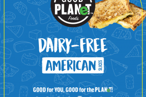 DAIRY-FREE AMERICAN SLICES