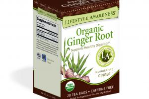 INVIGORATING GINGER SUPPORTS HEALTHY DIGESTION HERBAL TEA SUPPLEMENT