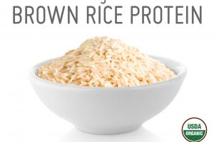 ORGANIC BROWN RICE PROTEIN WHOLE FOOD POWDER