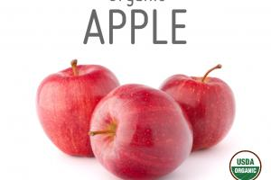 ORGANIC APPLE WHOLE FOOD POWDER