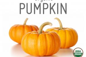 PUMPKIN ORGANIC WHOLE FOOD POWDER