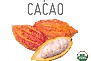 ORGANIC CACAO PURE SPICE POWDER