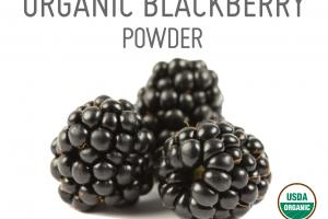 ORGANIC BLACKBERRY WHOLE FOOD POWDER