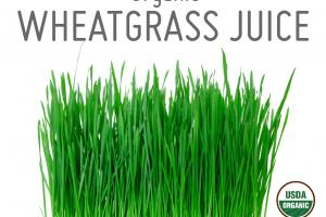 ORGANIC WHEATGRASS JUICE WHOLE FOOD POWDER