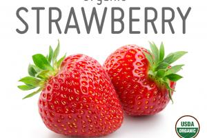 ORGANIC STRAWBERRY WHOLE FOOD POWDER