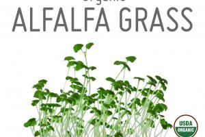 ORGANIC ALFALFA GRASS WHOLE FOOD POWDER