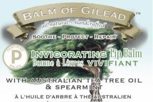 INVIGORATING LIP BALM WITH AUSTRALIAN TEA TREE OIL & SPEARMINT, TEA TREE