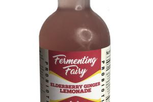 ELDERBERRY GINGER LEMONADE PROBIOTIC