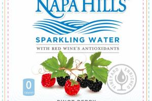 PINOT BERRY SPARKLING WATER WITH RED WINE'S ANTIOXIDANTS