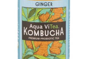 GINGER KOMBUCHA PREMIUM PROBIOTIC TEA