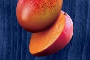 PURE MANGO NATURAL DRIED FRUIT BAR