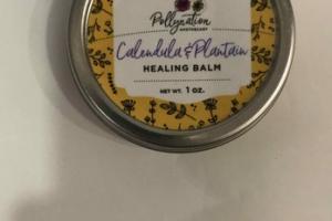 CALENDULA & PLANTAIN HEALING BALM