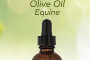 CBD HEMP OLIVE OIL EQUINE SUPPLEMENT