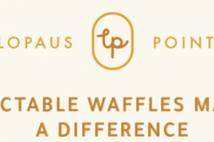 DELECTABLE WAFFLES