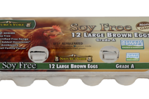 GRADE A LARGE BROWN EGGS