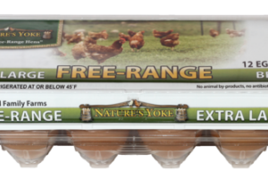 GRADE A FREE-RANGE EXTRA LARGE BROWN EGGS