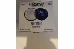 BLUEBERRY COCONUT YOGURT
