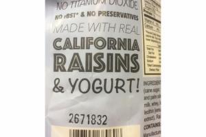 VANILLA YOGURT RAISING NATURAL FOODS