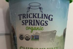 Chip 'n' Mint Super Premium Organic Ice Cream