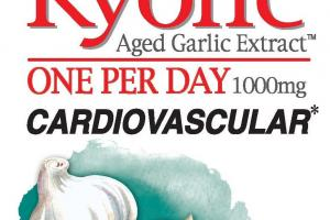 One Per Day 1000mg Aged Garlic Extract Odorless Organic Garlic Supplement