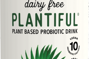 Maca Coconut Organic Dairy Free Plant Based Probiotic Drink
