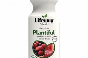 MIXED BERRY ORGANIC PROBIOTIC PLANT BASED DRINK