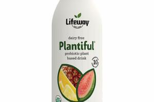 TROPICAL FRUIT DAIRY FREE PROBIOTIC PLANT BASED DRINK