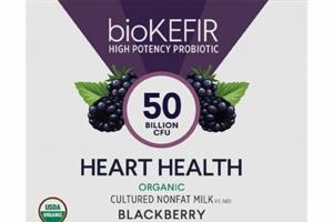BLACKBERRY ORGANIC CULTURED NONFAT MILK