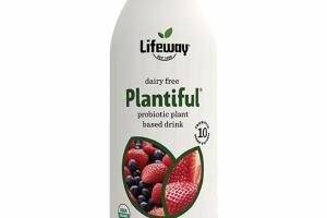 MIXED BERRY DAIRY FREE PROBIOTIC PLANT BASED DRINK