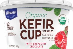 WITH RASPBERRY CHOCOLATE KEFIR CUP STRAINED CULTURED LOWFAT MILK