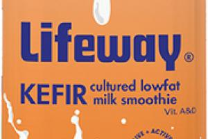 PUMPKIN SPICE KEFIR CULTURED LOWFAT MILK SMOOTHIE