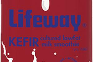 EGGNOG KEFIR CULTURED LOWFAT MILK SMOOTHIE